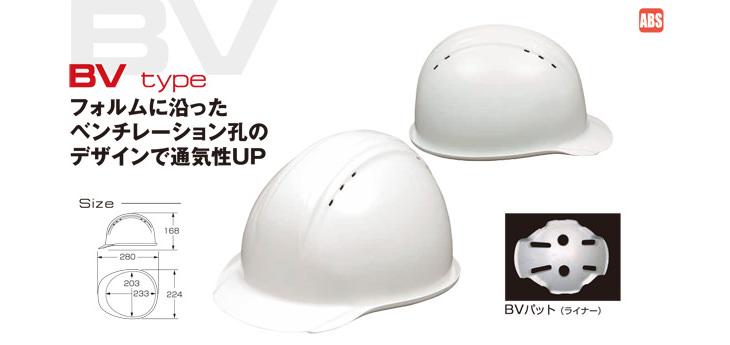 BV-1V